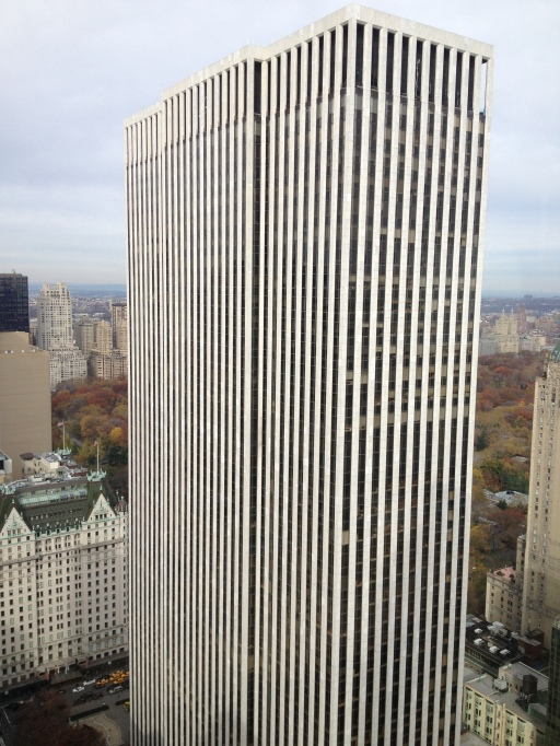 central park, the general motors building, new york city, the best dress up