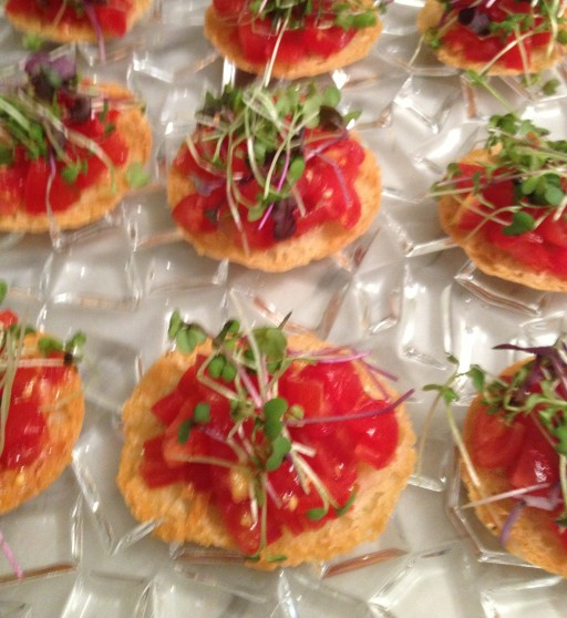 parmesan and tomato tuiles, appetizers, antipasti, the best dress up